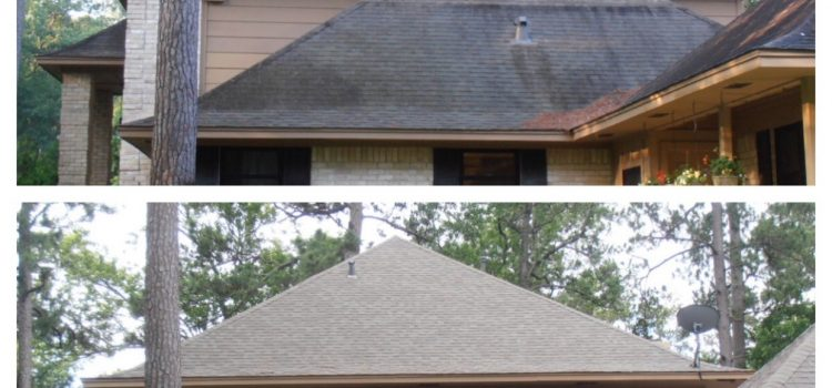 ROOF APPEARANCE ESTABLISHES CURB APPEAL